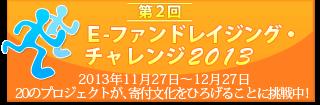 第2回 E-ファンドレイジング・チャレンジ2013